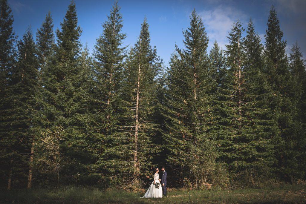 ideas de fotos de boda